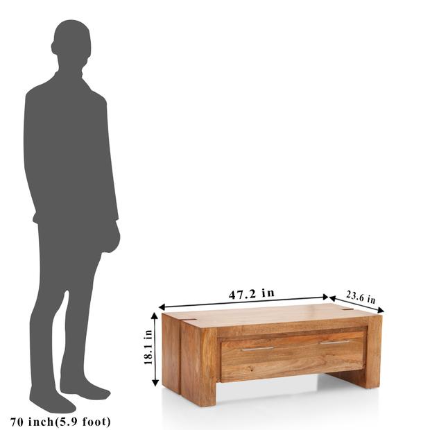 Troy storage coffee table frtbcf11nt10030 4