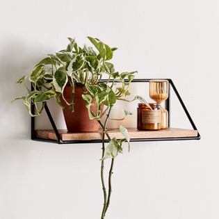 Tibur Wall Shelf